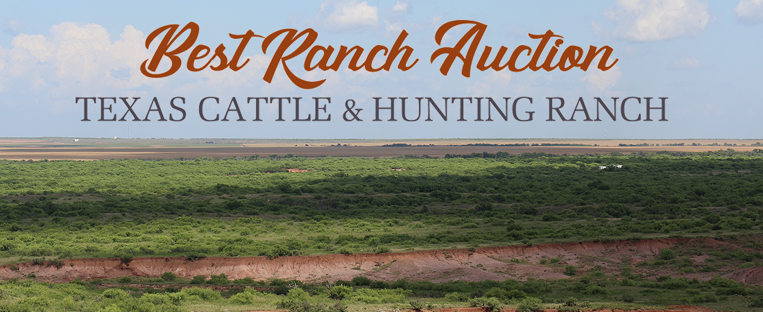 Best Ranch Auction Wichita Falls Texas Ranch For Sale